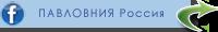 Фейсбук. Павловния Россия